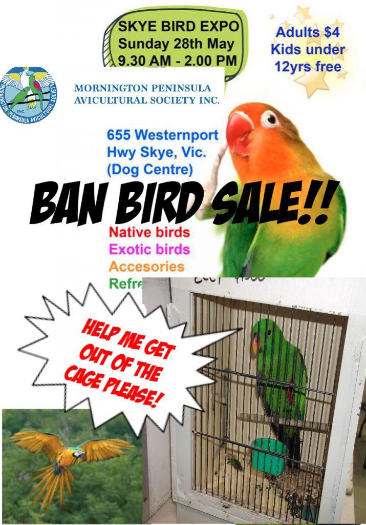 BAN BIRD SALES