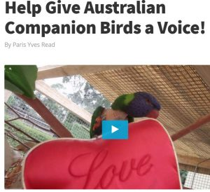 Together let's spread the word and help birds fly again!!