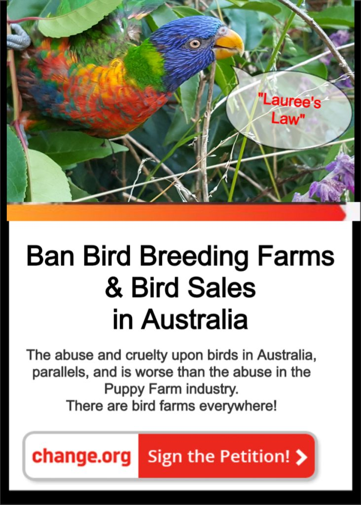 Please Click to Sign Petition & Share!
